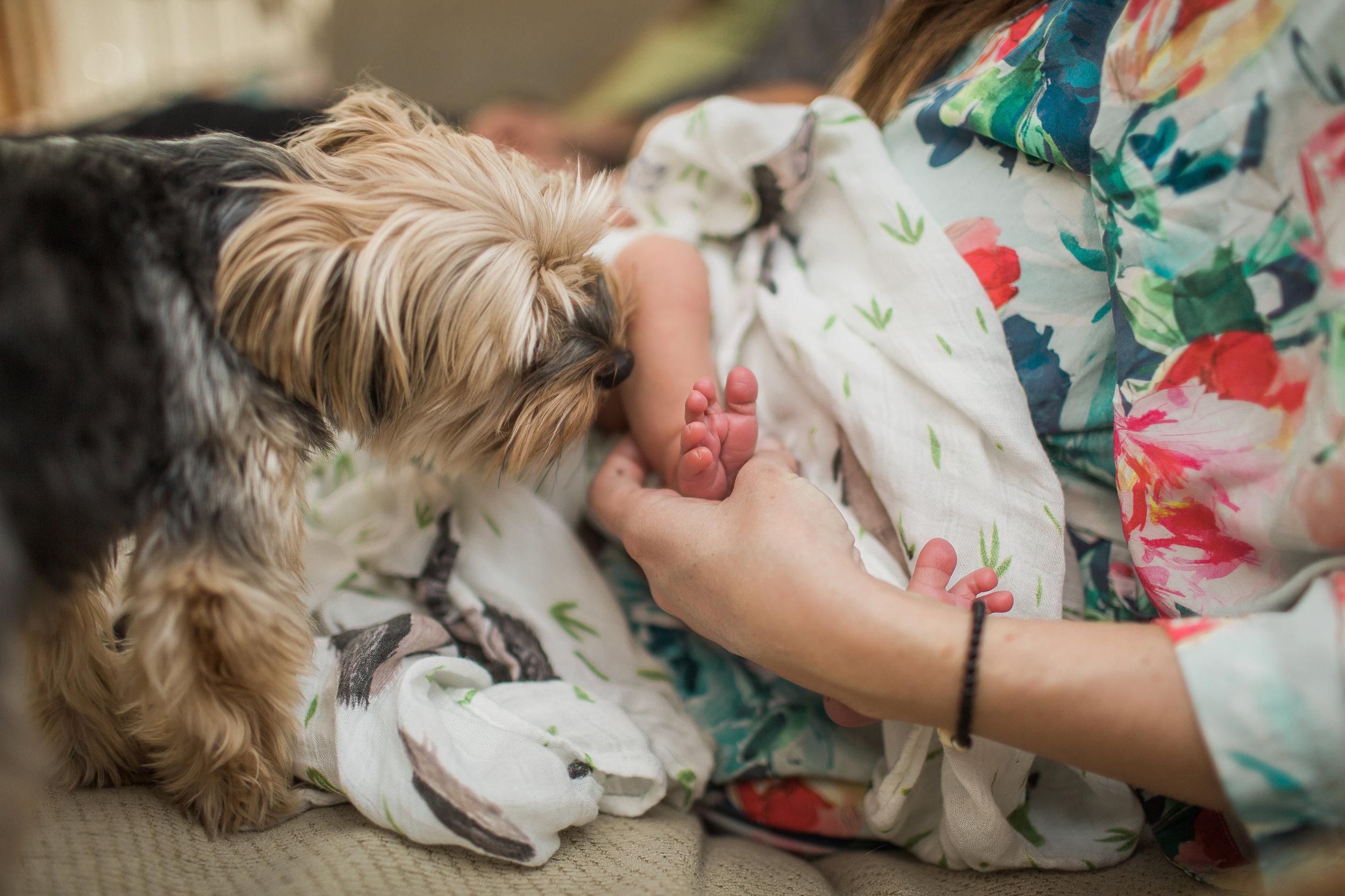 Czop_newborn-18.jpg