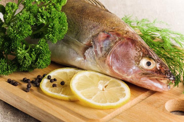ZANDER FISH