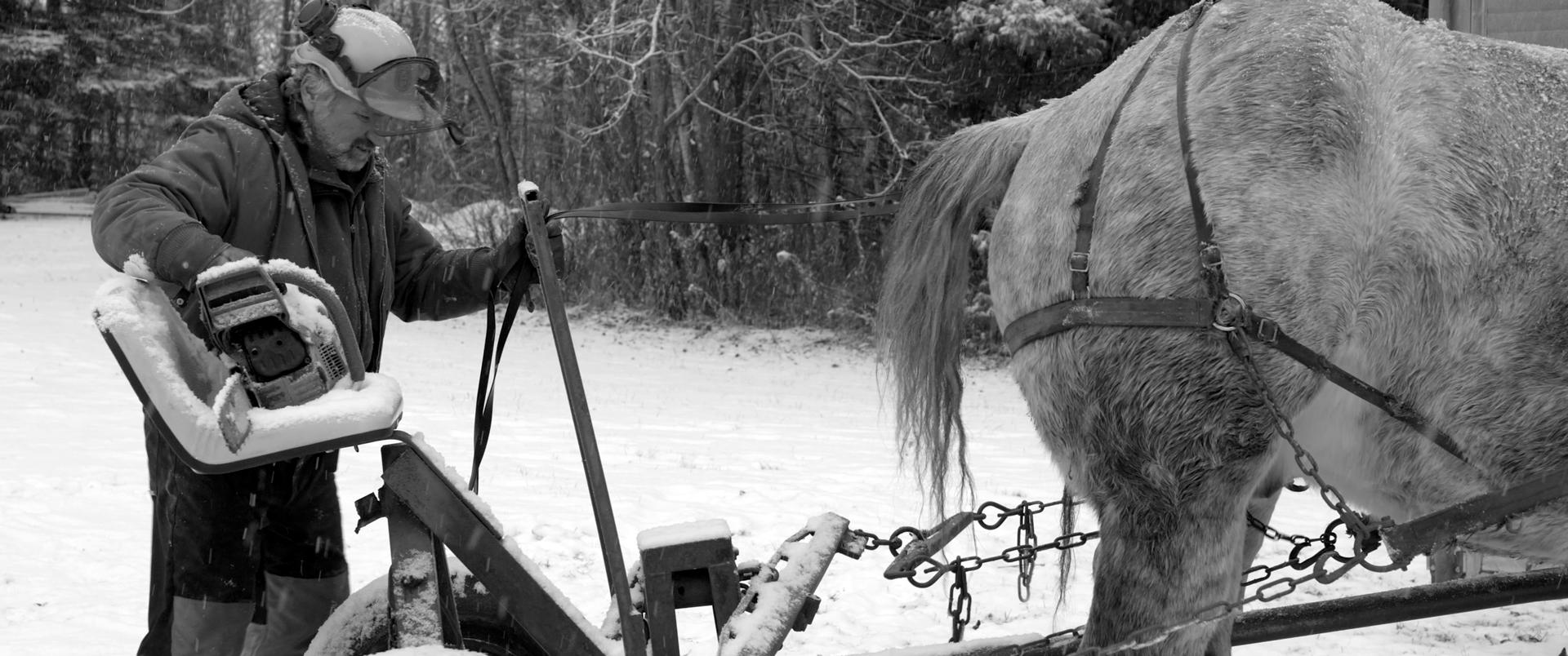Workhorse-Still02-Logging-Fix.jpg