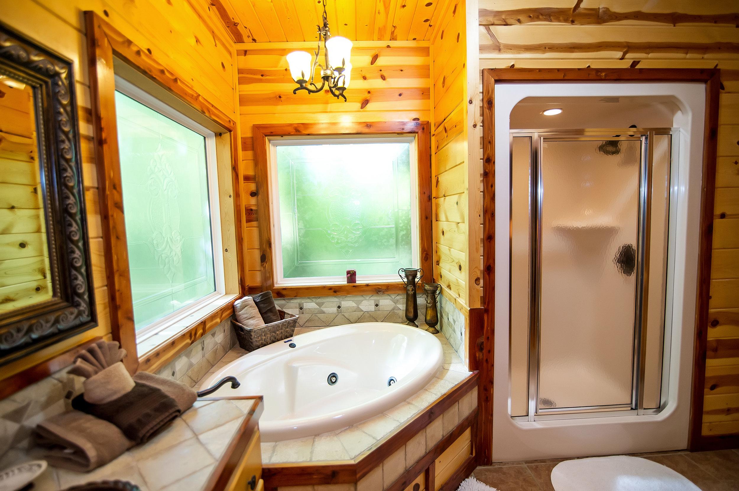 FPL Master bath - tub - shower.jpg