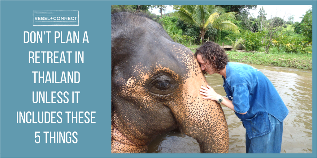 Company retreat in Thailand Baan Chang Elephant Park Chiang Mai Thailand