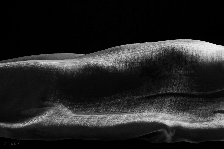012_DerekClarkPhoto-Fine_Art_Nude.jpg