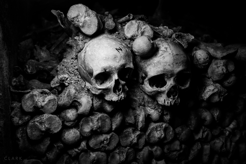 -Catacobes-DerekClarkPhoto-002