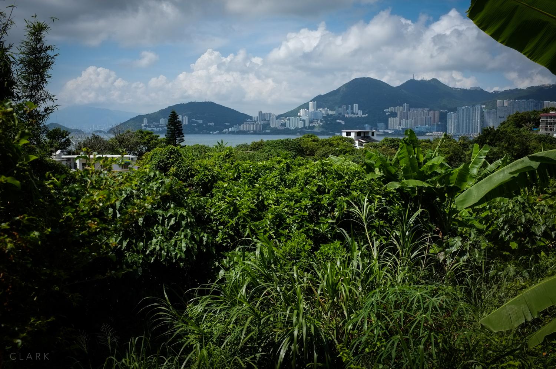 025_DerekClarkPhoto-HongKong.jpg