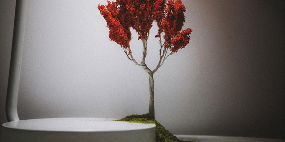 WebsetW TREES SML 01 tomsimmonds_0002_Trees 1 XXL_0005_Tree 0001.jpg