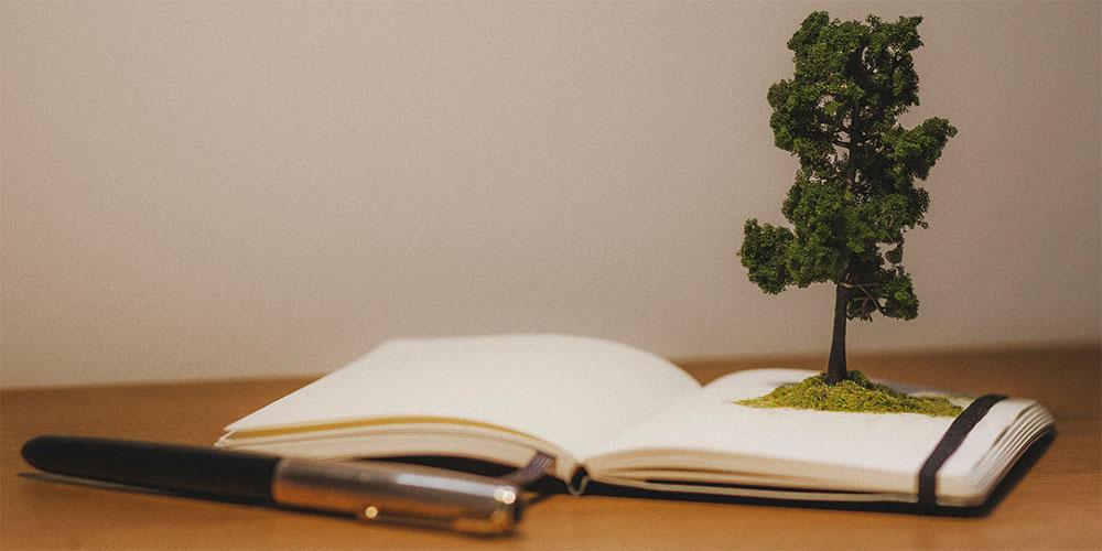 WebsetW TREES SML 01 tomsimmonds_0004_Trees 1 XXL_0003_Tree 0003.jpg