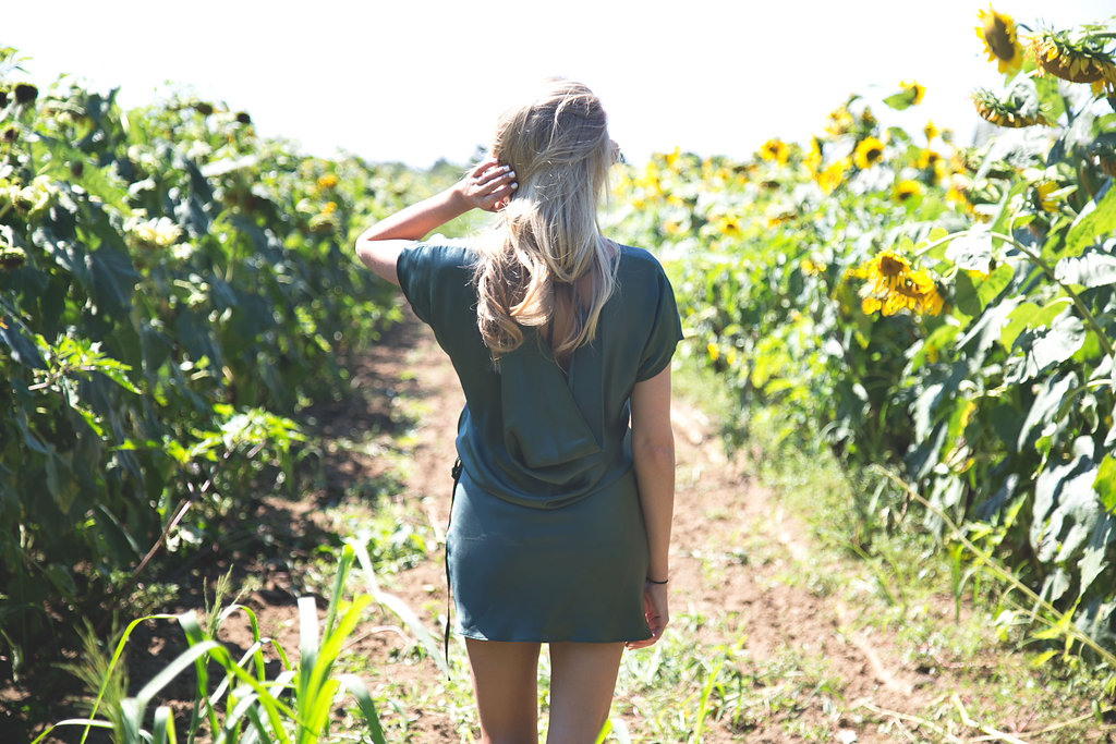 Sunflower-55copy.jpg