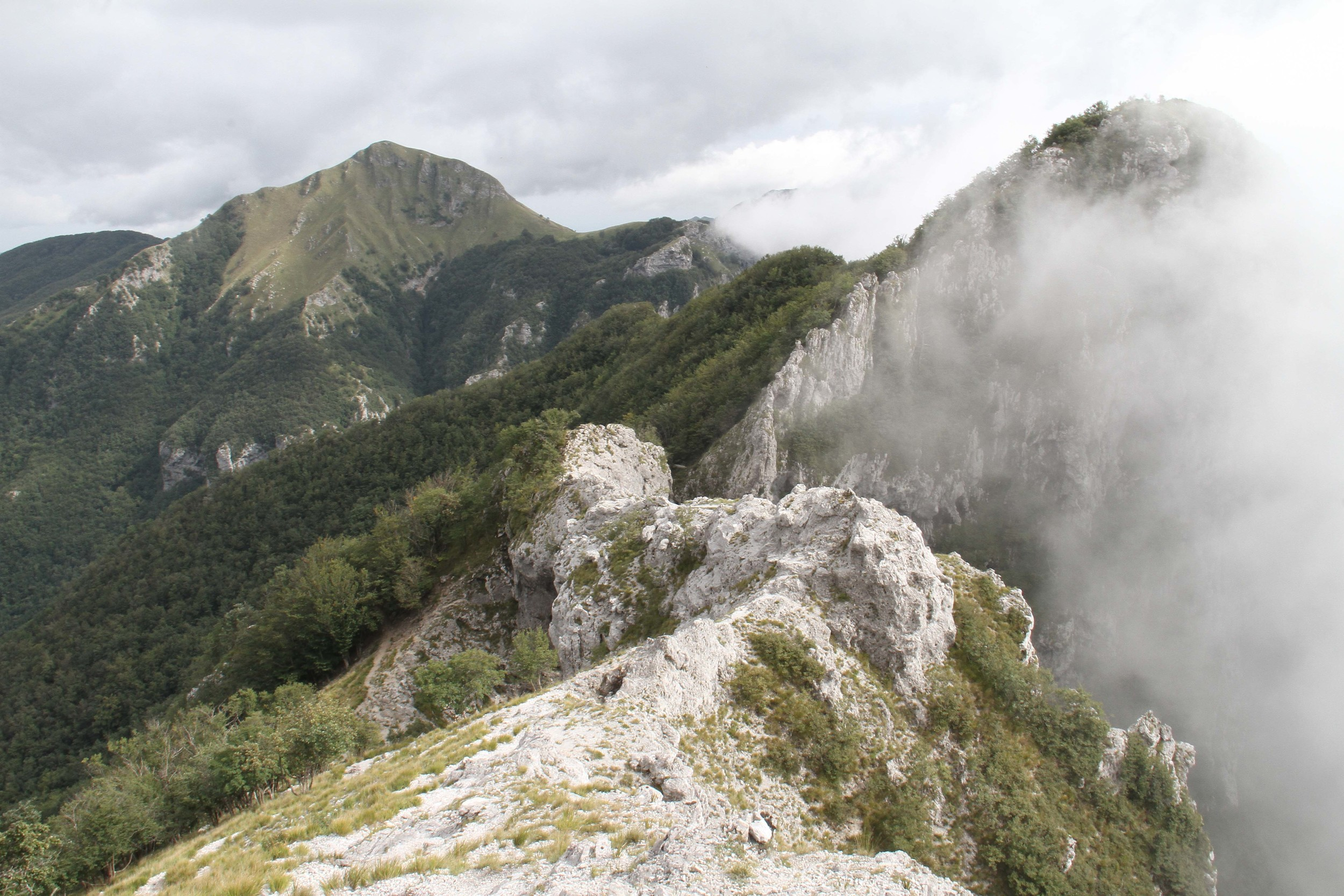 misty Italian alps