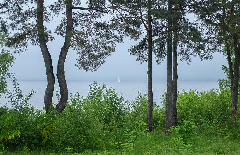 Karljohansvern-naturen-DSCF2906.jpg