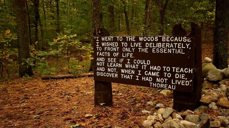 Sign near the site of Thoreau's cabin at Walden Pond.
