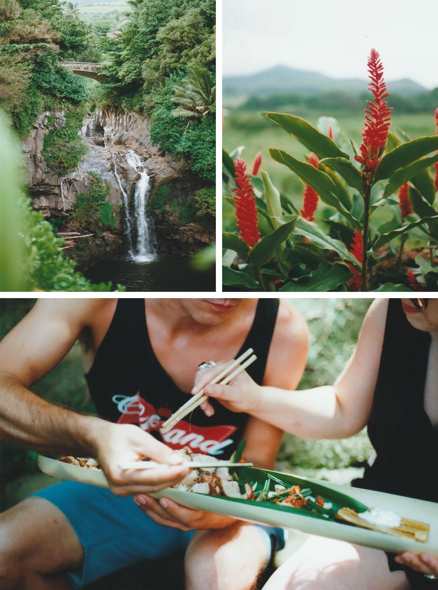 hawaii_collage_1.jpg