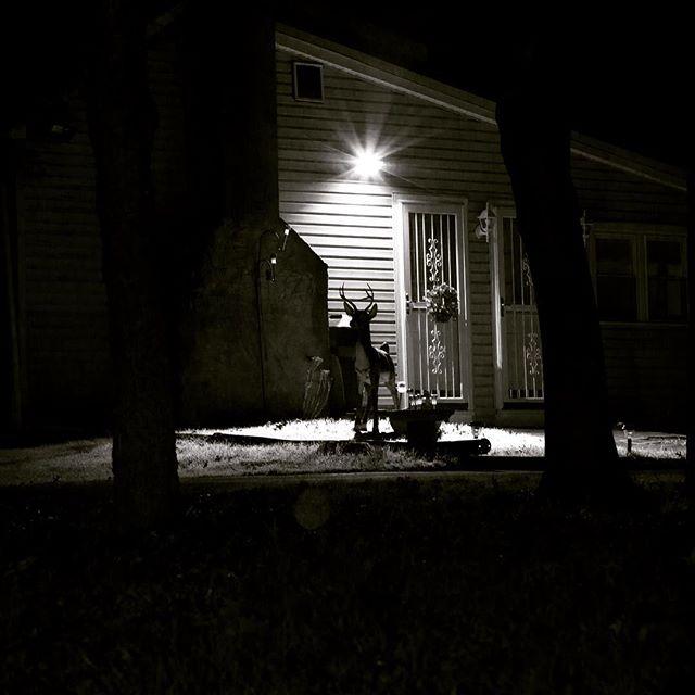 #blackandwhite #nightphotography