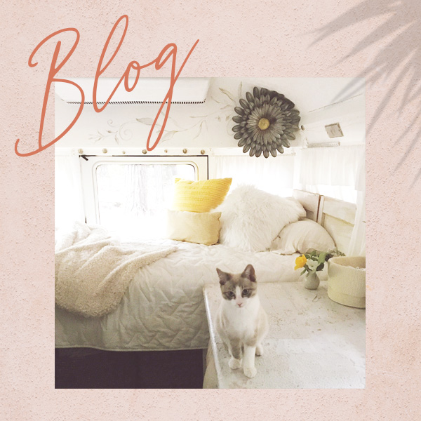 Blog - Join the journey. Follow along with Jennifer, Furgus (the cat), and Cozy (the bus). Creating art, living life in a converted school bus, traveling, and exploring the life of a boho nomad.CLICK HERE TO VISIT THE BLOG
