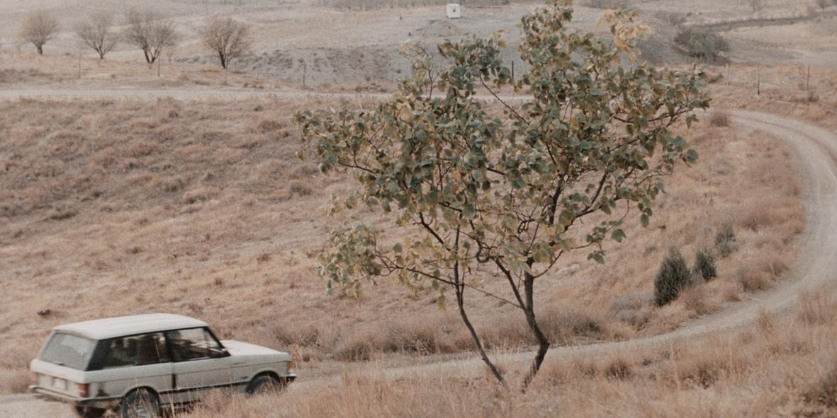 Taste Of Cherry a film directed by Abbas Kiarostami