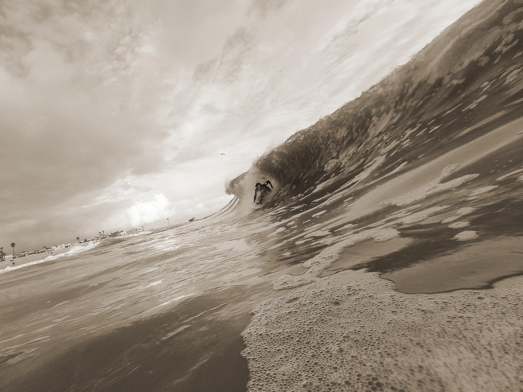 Southside Seal Wasp Sepia.jpg
