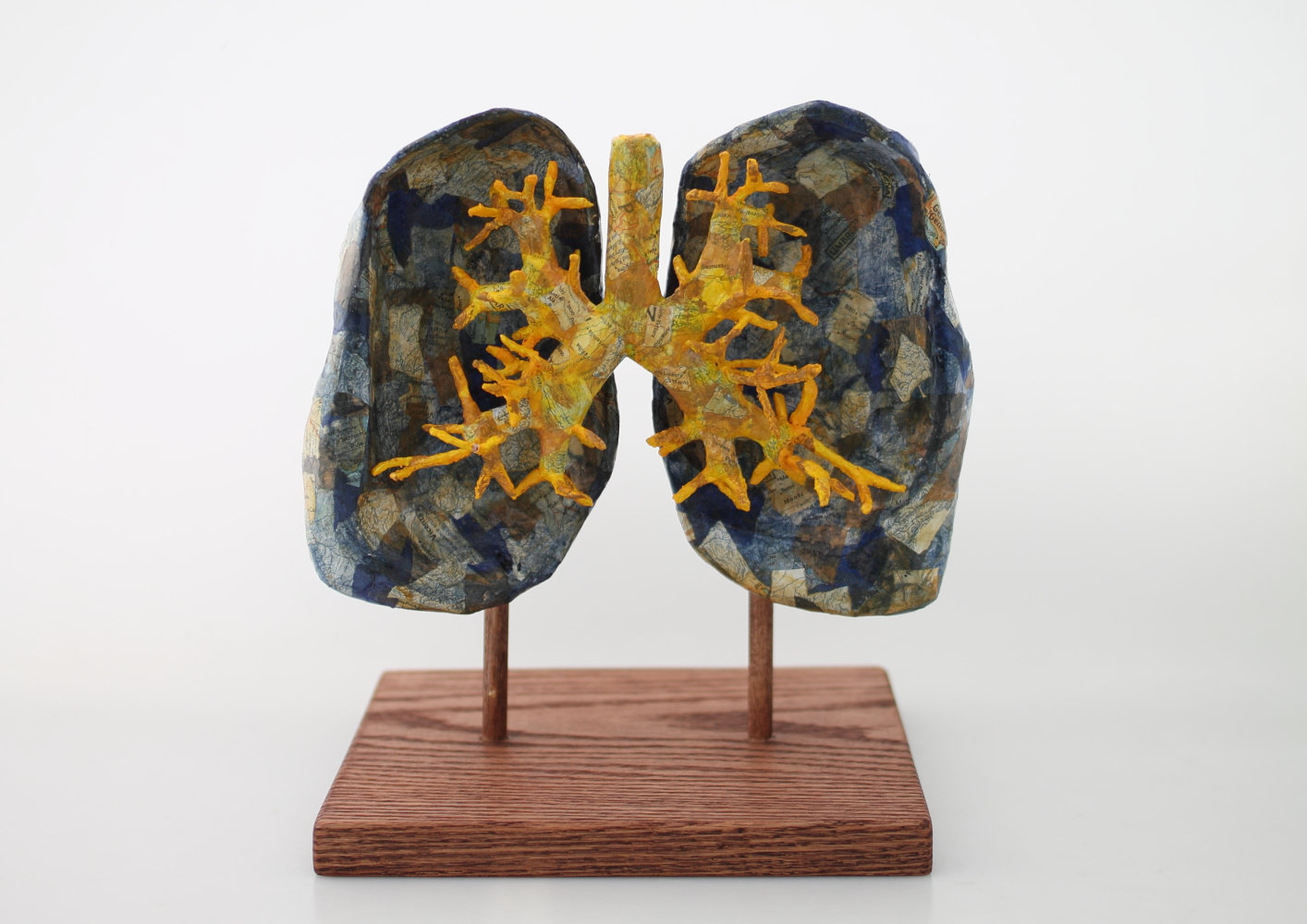 Lungs  Papier maché and wood  8 x 7 x 9 inches  2017