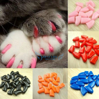 NailCaps.PNG