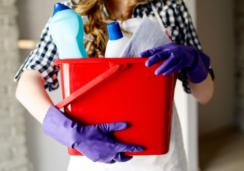 Ahousecleanerforcesustokeepittogether..PNG