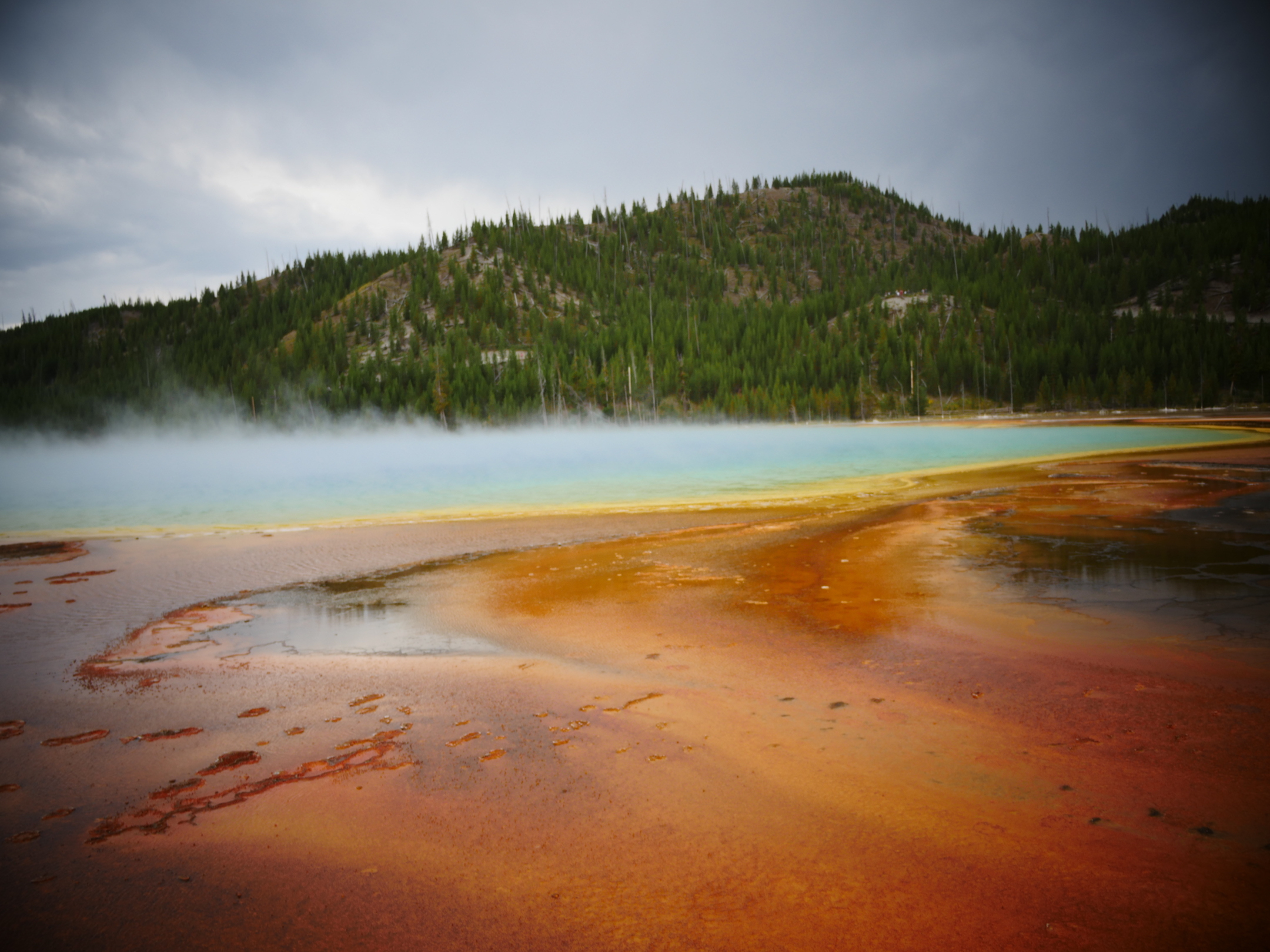 Grand Prismatic Spring, photo by Jade Begay