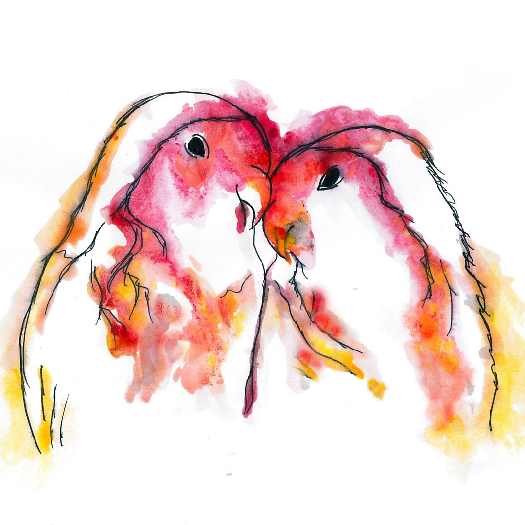 Love Birds.jpg