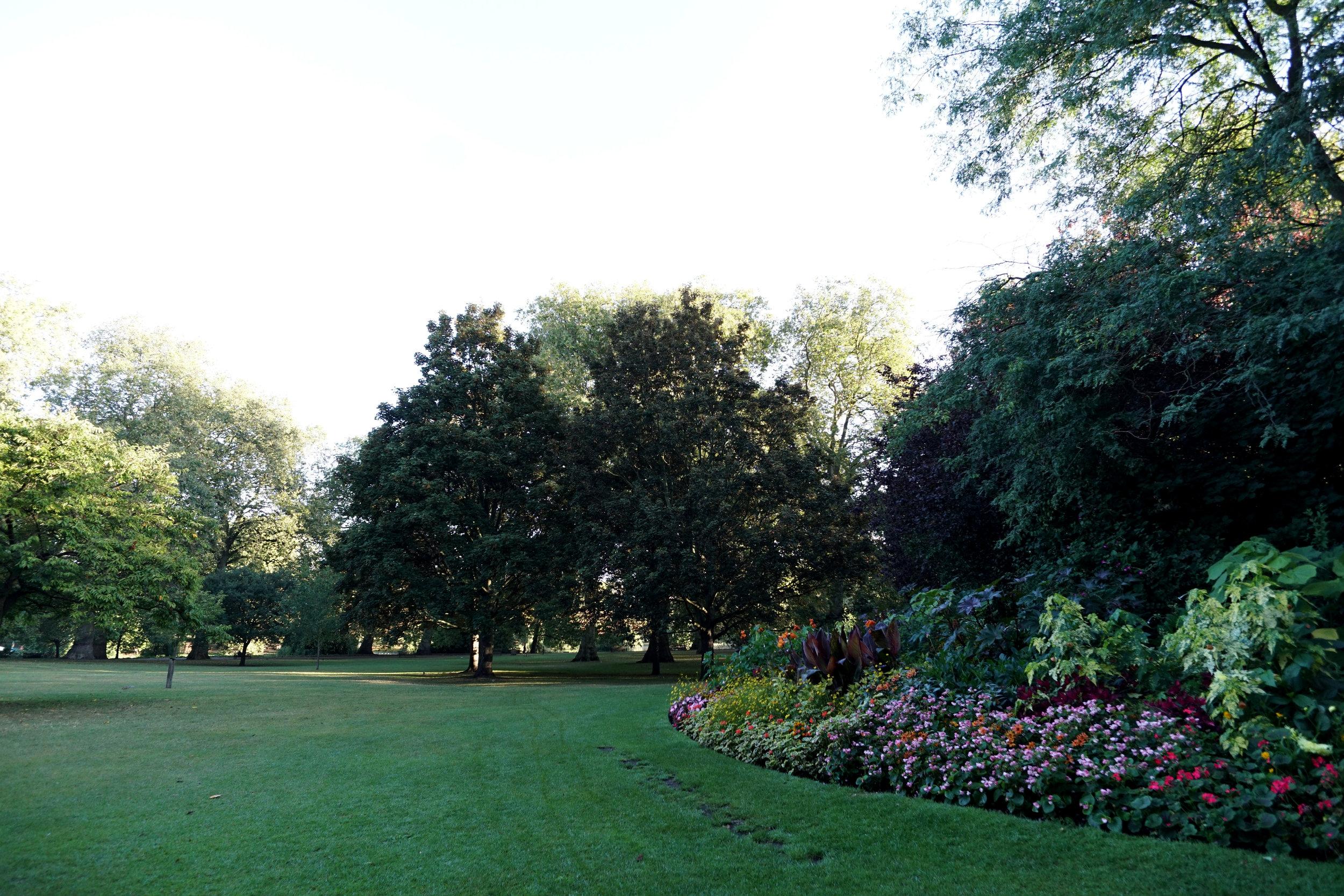 Stroll through the park