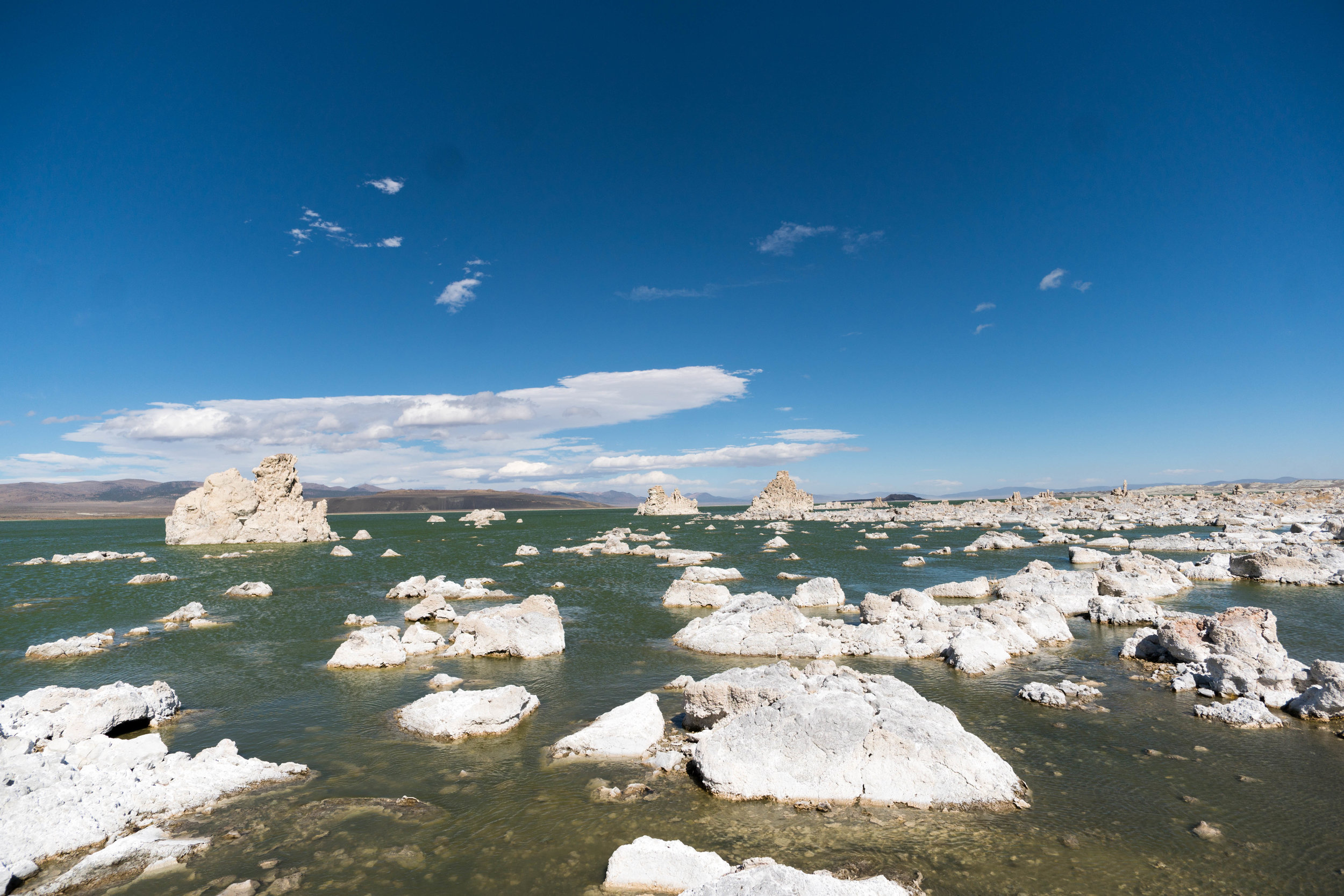 Salt towers of Mono Lake