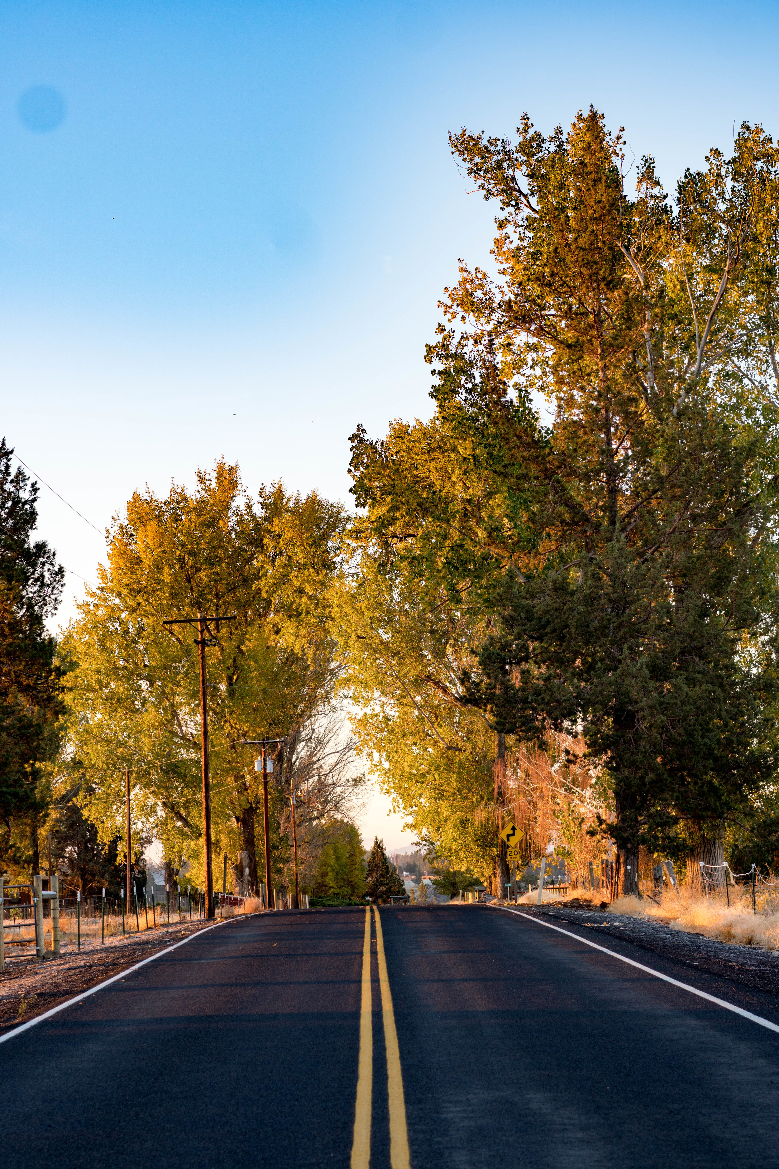 Fall colors of Central Oregon