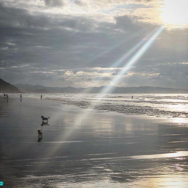 Atardecer en Playa de vega con los perros y los surfers #atardecer #playadevega