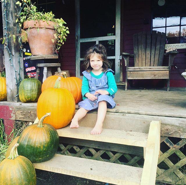 One of the cutest pumpkins I know! #hookermountainfarm #fallishere #ourfavoritetimeoftheyear #pumpkinspice