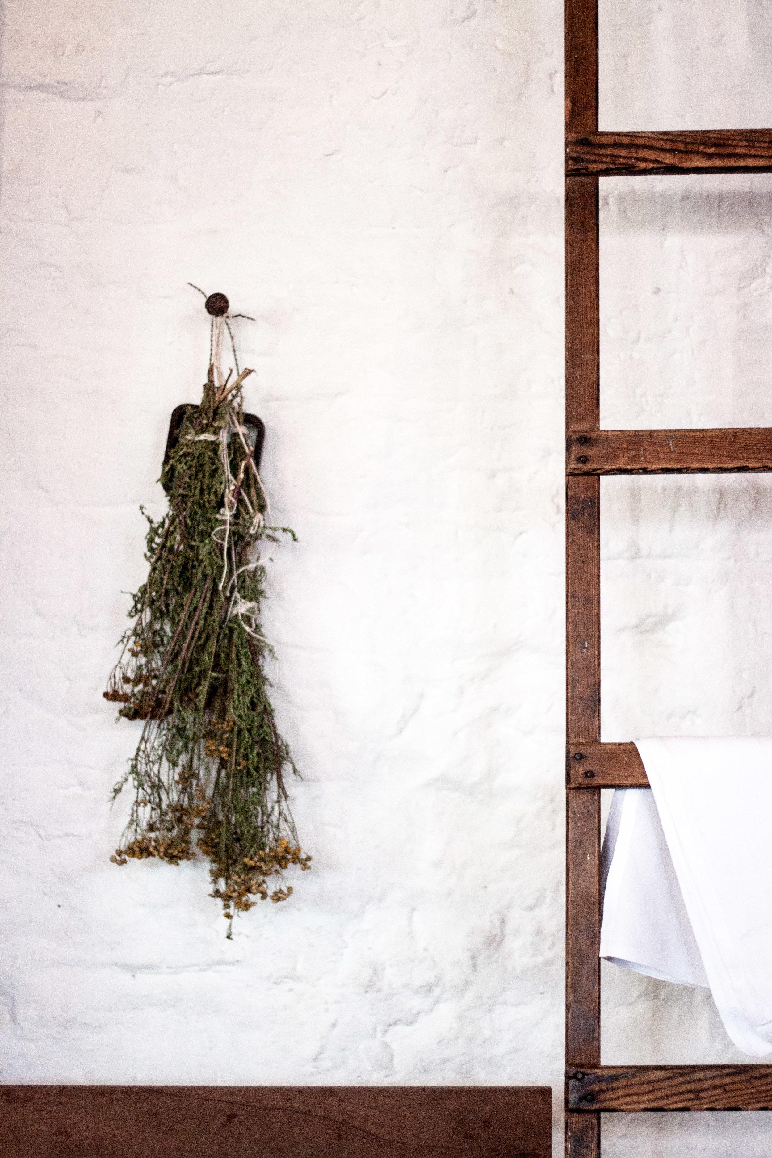 Scotland Timberyard Restaurant Cindy Lin Photography-9.jpg