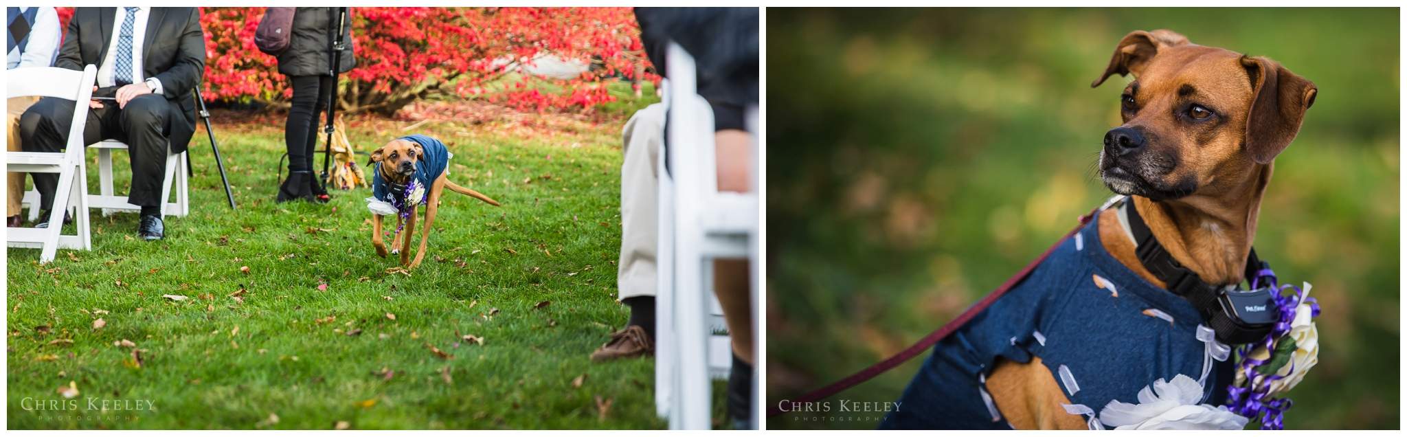 new-hampshire-wedding-photographer-portsmouth-country-club-01.jpg