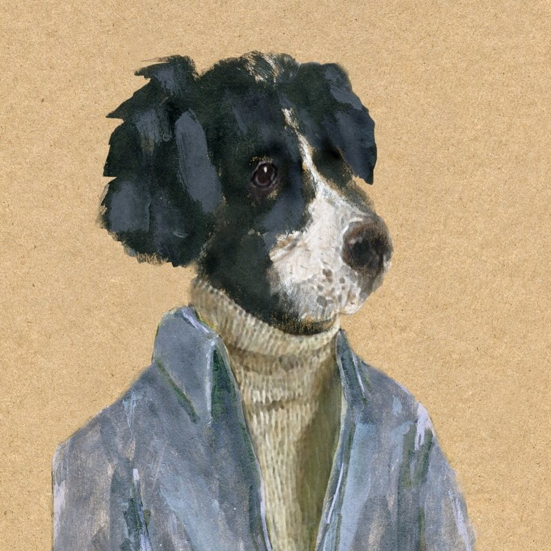 "'Dog in a Sweater,"" by John Cerasulo"
