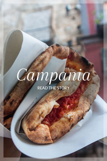 Campania-callout.jpg