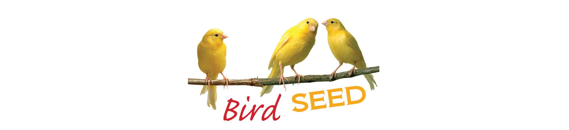 BIRD SEED LOGO.png