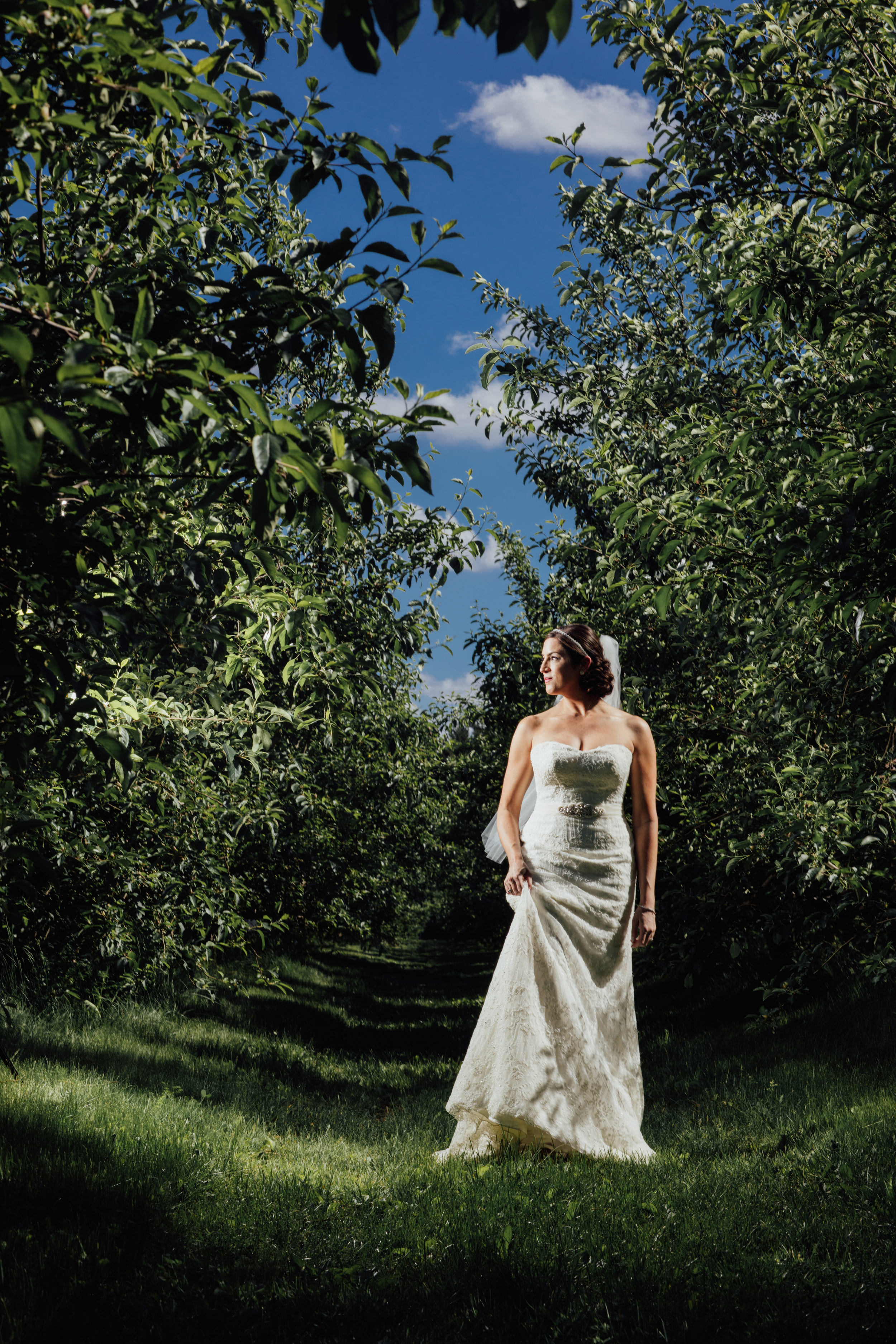 Bride at County Line Orchard.jpg