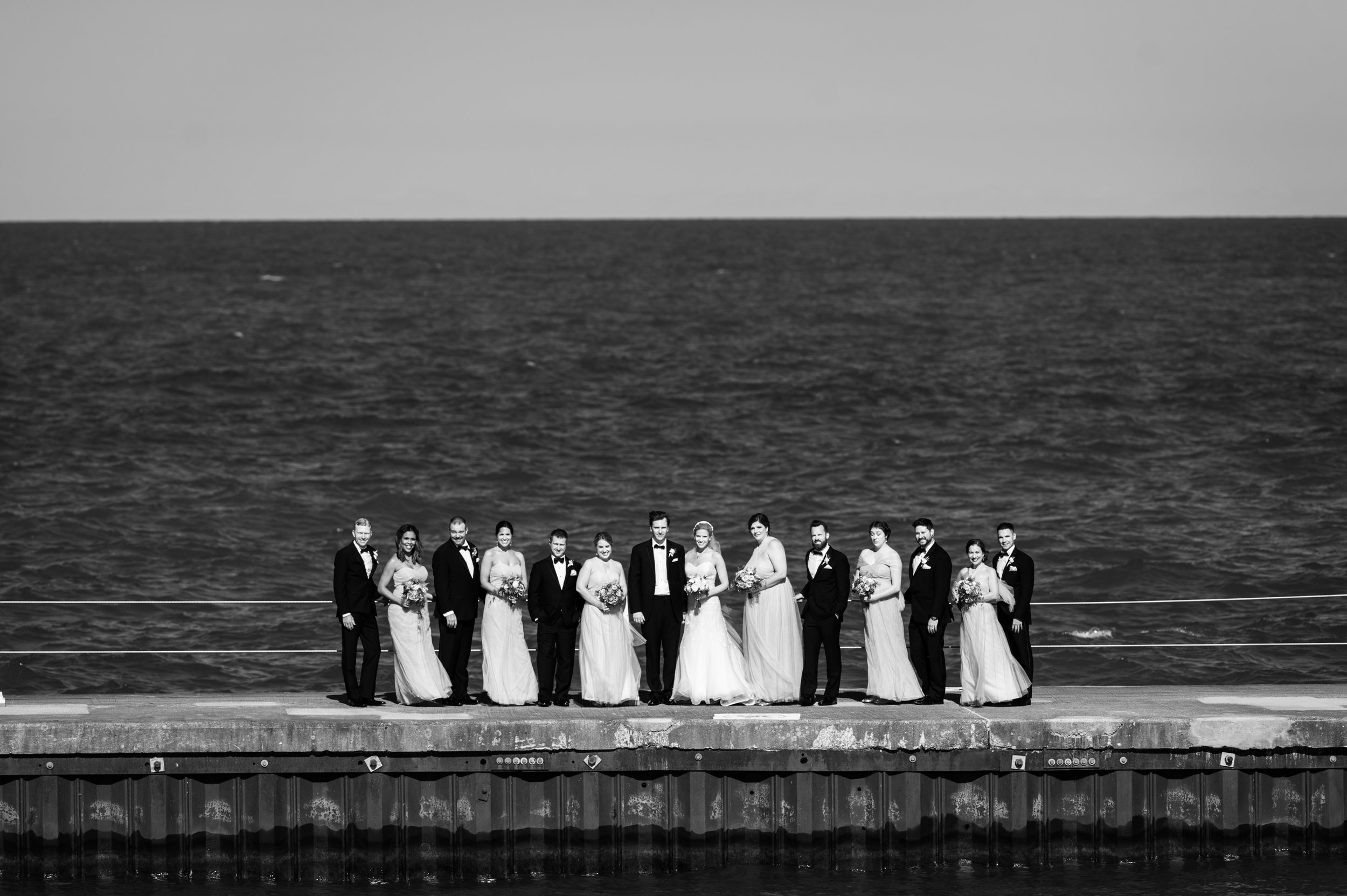 Wedding photography along the chicago lakefront