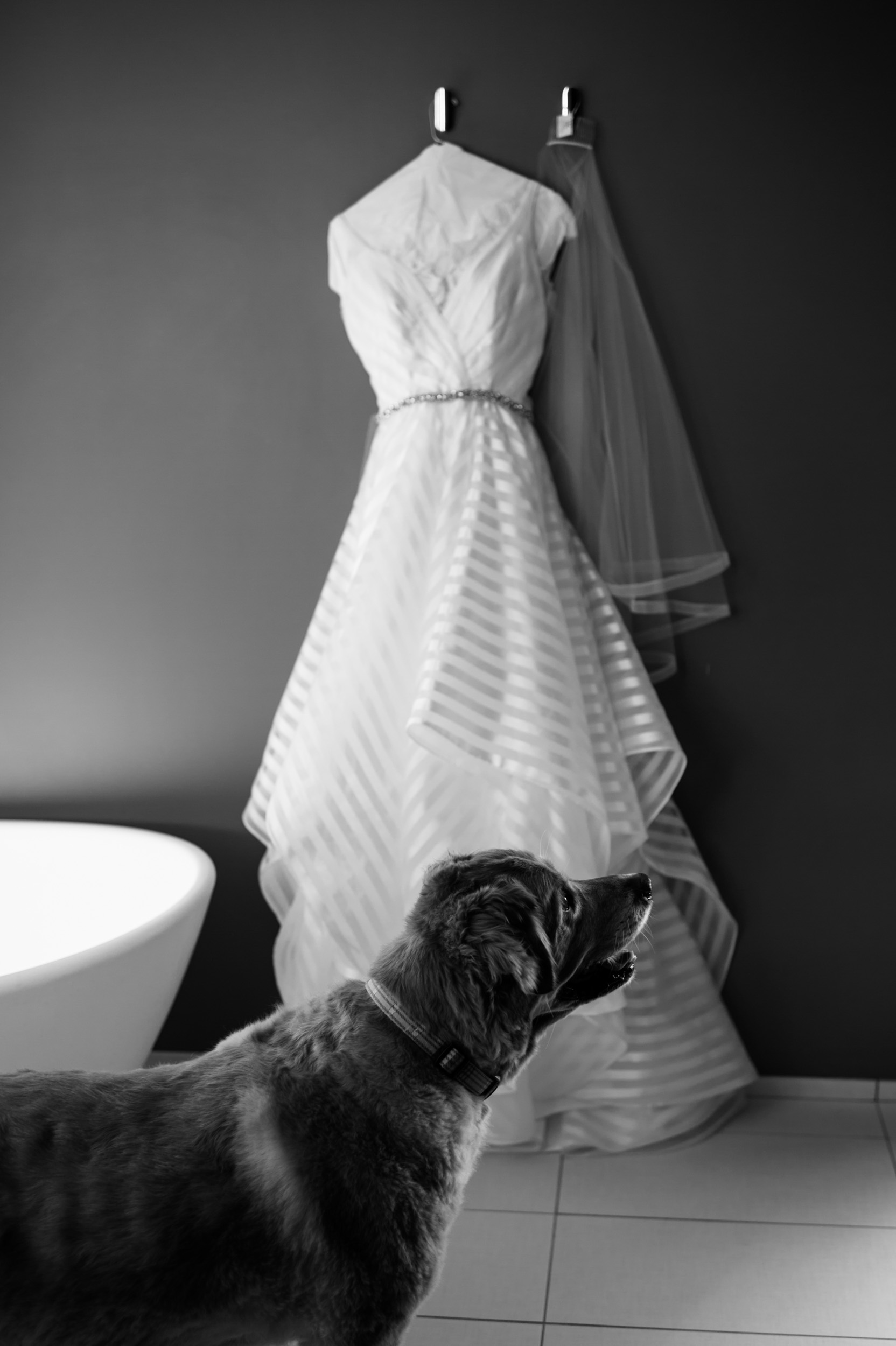 Documentary wedding photos in Chicago