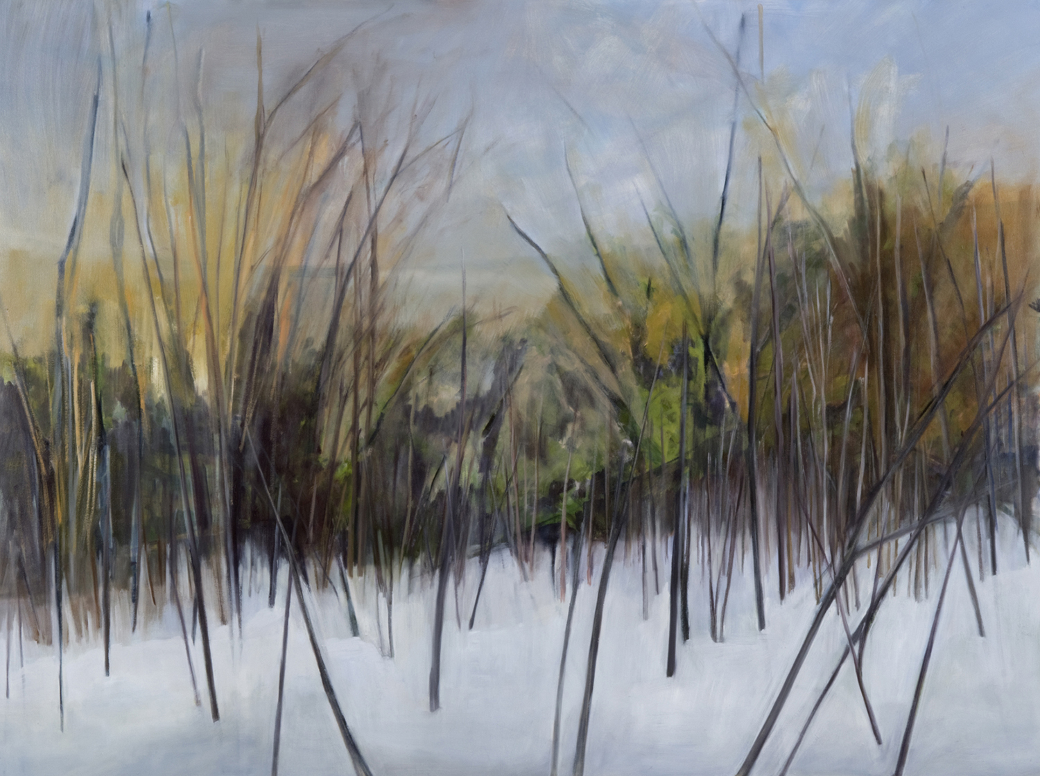 Early Winter , 2008, Oil on canvas, 54 x 72 inches (Private Collection, Fredericton, NB)