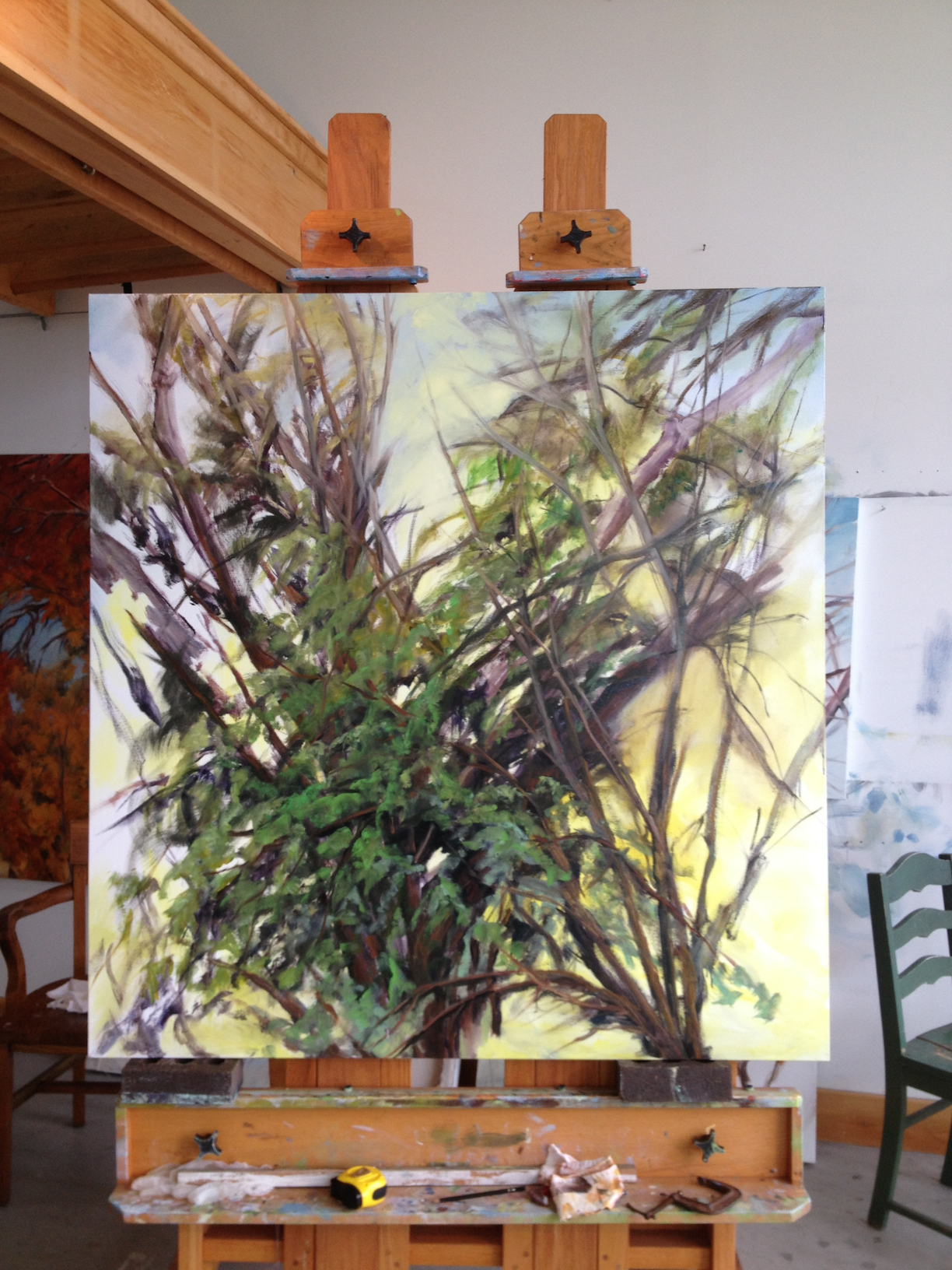 """Work In Progress, June 2015-16, Oil on Canvas,    54 x 52 inches     . . . I leave the studio thinking, """"I'll return tomorrow at the same time"""" knowing full well that minutes, let alone a day can shift the light. What I did not bargain for was three weeks of rain that followed!"""