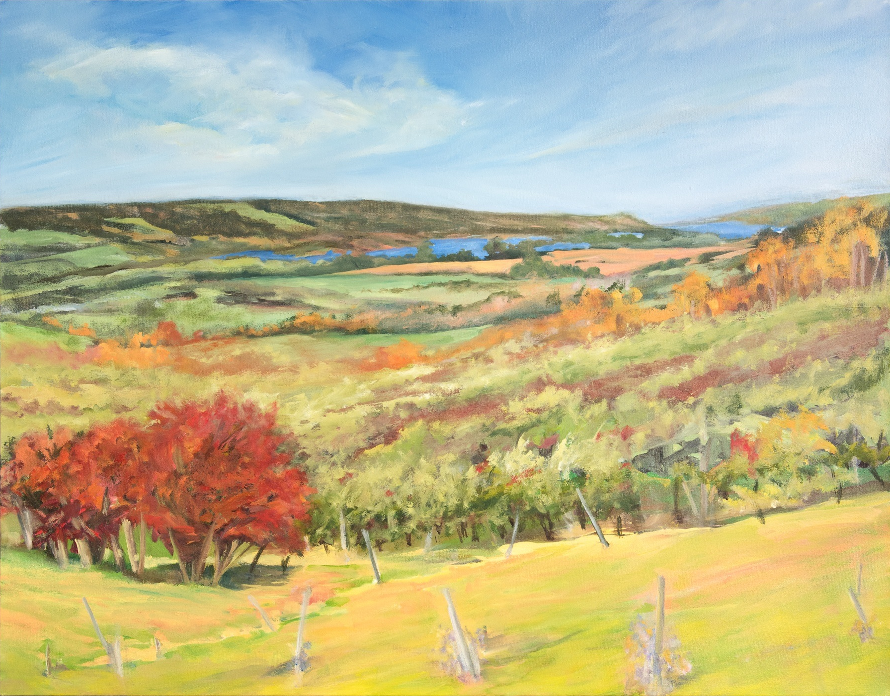 Hawthorns & Michaelmas , 2014, Oil on Canvas, 32 x 40 inches (Private Collection-Fredericton, NB)