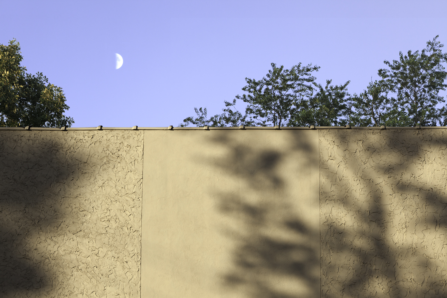 Closer Than You Think, 2013, archival pigment print on paper