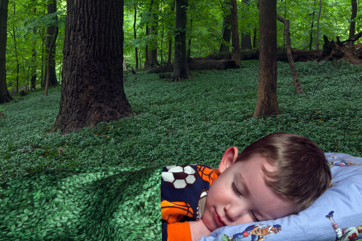 Ground Cover, 2012, archival pigment print on paper