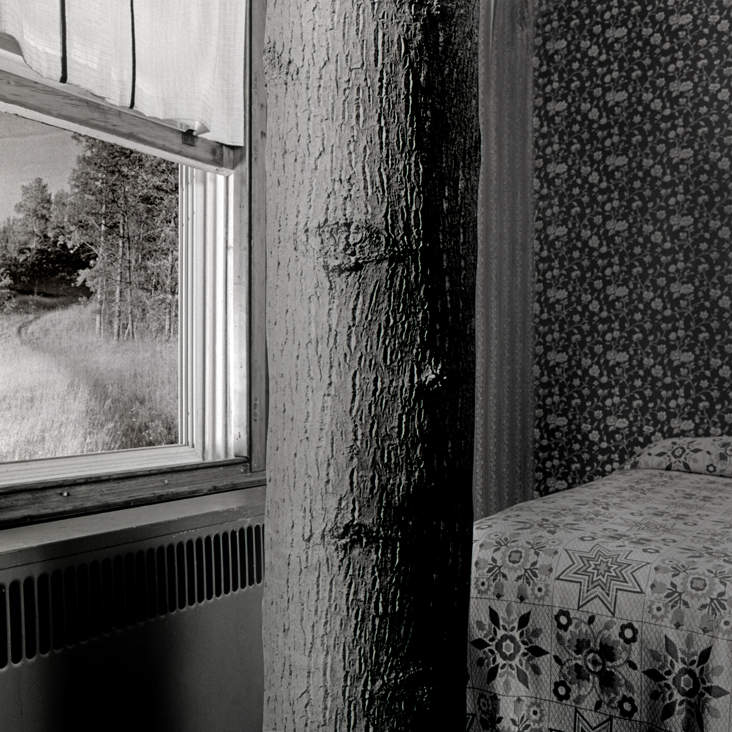 Window, 2006, archival pigment print on paper