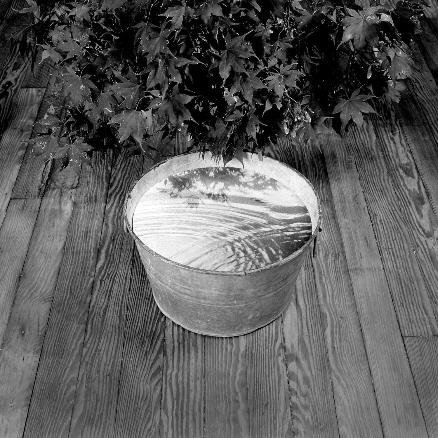 Bucket, 2005, archival pigment print on paper