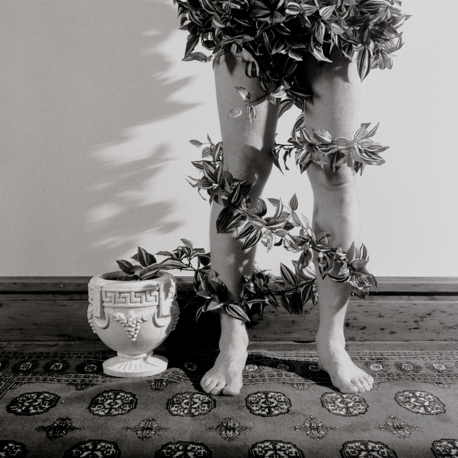 Wrapped Legs, 2005, archival pigment print on paper