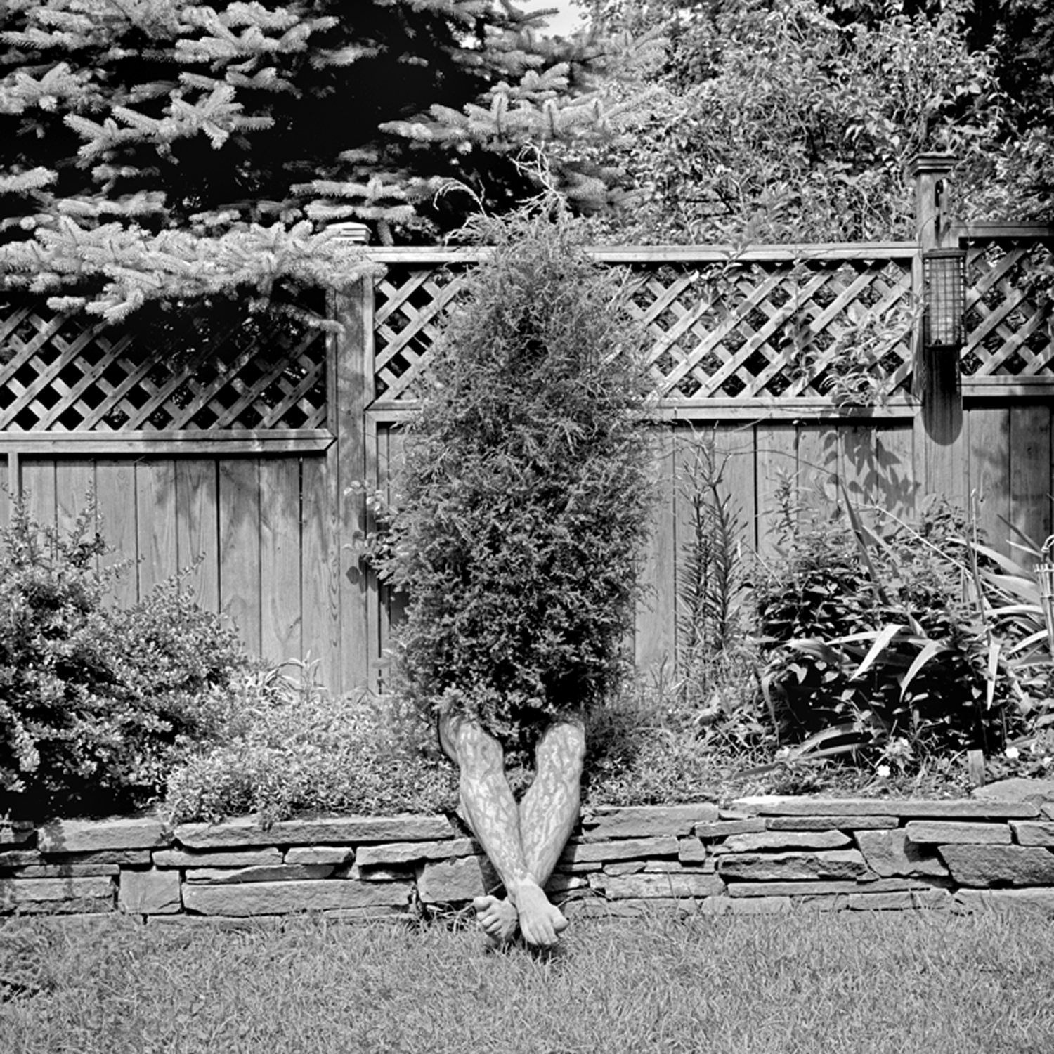 Resting, 2005, archival pigment print on paper