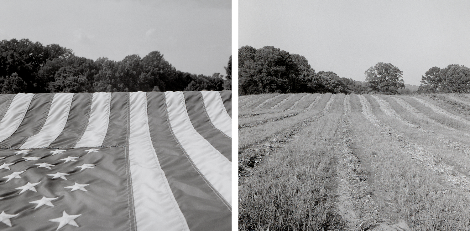 Stripes, 2003, archival pigment print on paper