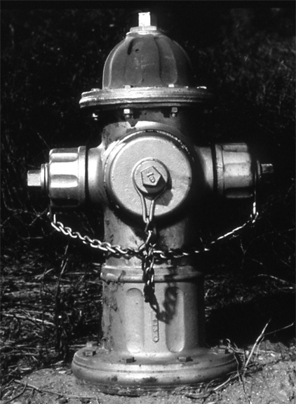 "Hydrant from the ""Animated Object"" Series, 1996, archival pigment print on paper"