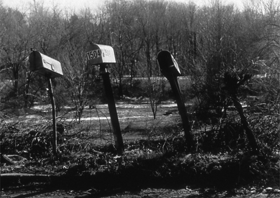 "Row of Mailboxes from the ""Animated Object"" Series, 1996, archival pigment print on paper"