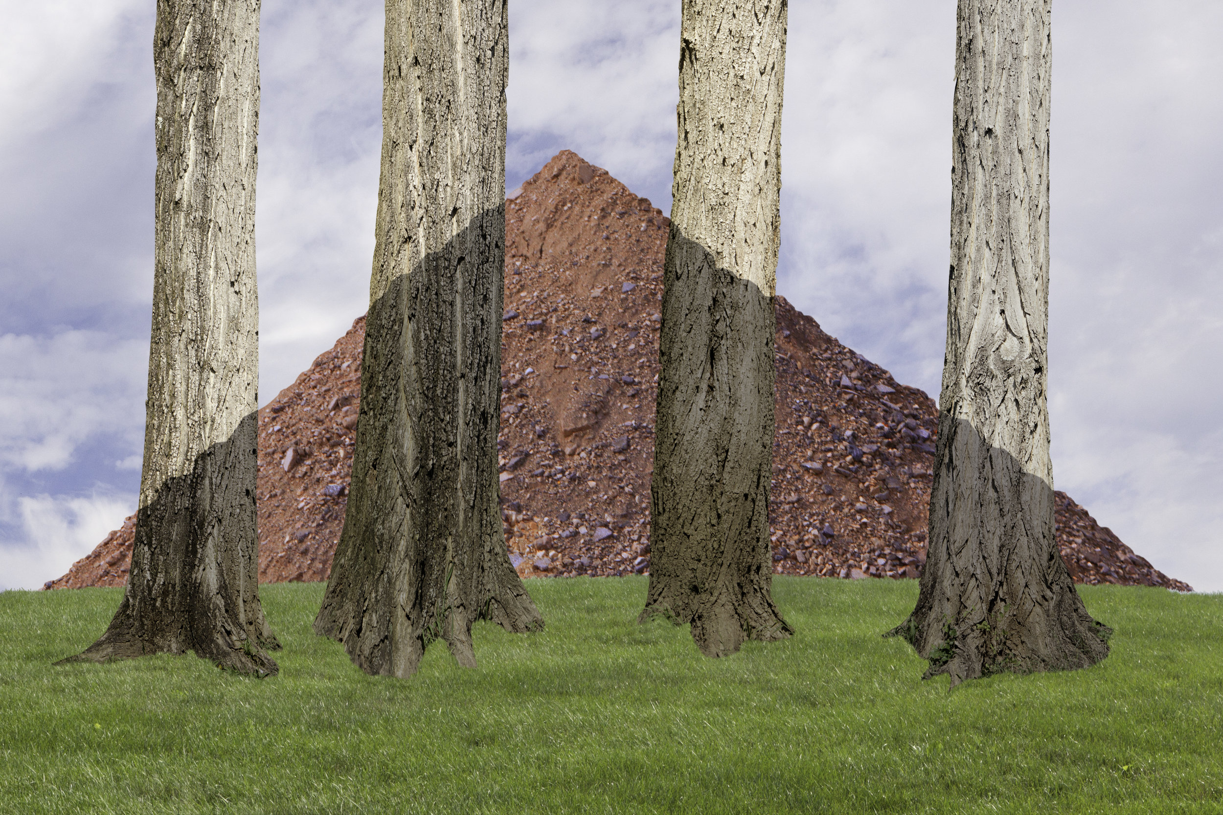 Trees and Hill, 2018, archival pigment print